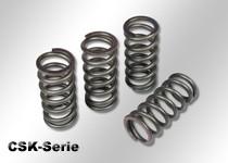 Verstärkte Kupplungsfedern (CSK-Serie)